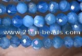 CTG1418 15.5 inches 2mm faceted round apatite beads wholesale