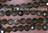 CTG1461 15.5 inches 2mm faceted round golden obsidian beads