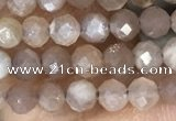 CTG1503 15.5 inches 3mm faceted round moonstone gemstone beads