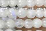 CTG1580 15.5 inches 4mm round white moonstone beads wholesale