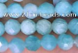 CTG1610 15.5 inches 5mm faceted round tiny amazonite beads
