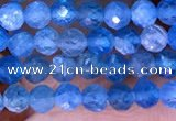 CTG1613 15.5 inches 3mm faceted round tiny apatite beads
