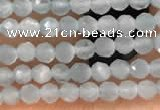 CTG2145 15 inches 2mm,3mm faceted round aquamarine gemstone beads