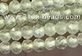 CTG2246 15 inches 2mm faceted round natural prehnite beads