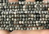 CZJ410 15.5 inches 4mm round green zebra jasper beads wholesale
