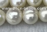 FWP100 15 inches 9mm - 10mm potato white freshwater pearl strands