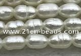 FWP153 14.5 inches 2mm - 3mm rice white freshwater pearl strands