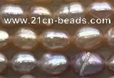 FWP160 14.5 inches 4.2mm rice purple freshwater pearl strands