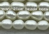 FWP161 14.5 inches 3.5mm - 4mm rice white freshwater pearl strands