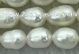 FWP174 15 inches 5mm - 6mm rice white freshwater pearl strands