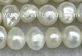 FWP30 14.5 inches 4.5mm potato white freshwater pearl strands