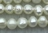 FWP38 14.5 inches 3mm - 4mm potato white freshwater pearl strands