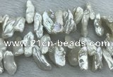 FWP416 Top-drilled 10*22mm - 12*25mm biwa freshwater pearl beads