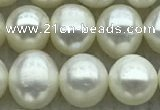 FWP71 15 inches 7mm - 8mm potato white freshwater pearl strands